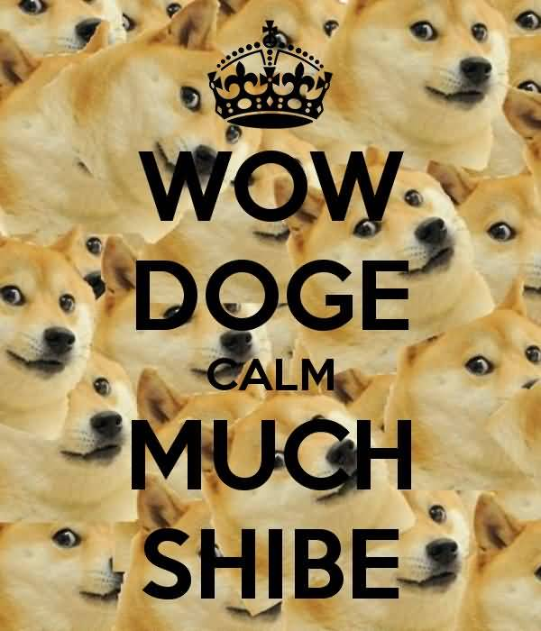 Funny Much Wow Dog Meme Picture