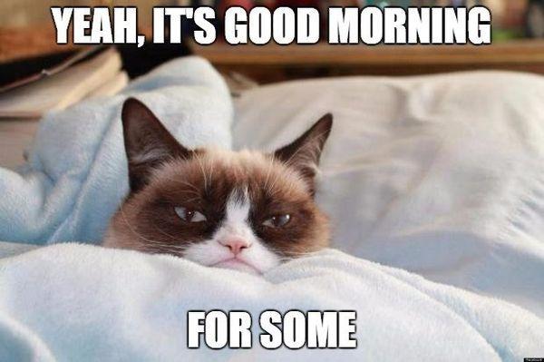 Funny Saturday Morning Jokes Images (3)
