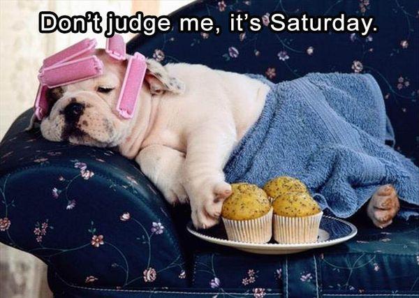Funny Saturday Photos Funniest (4)