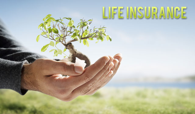 Get Life Insurance Quote 19