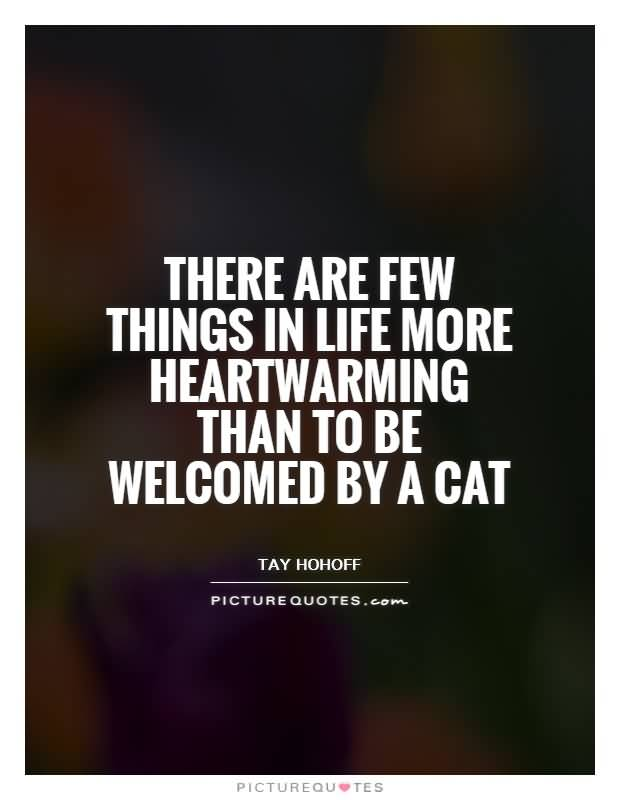 Heartwarming Quotes About Life 02