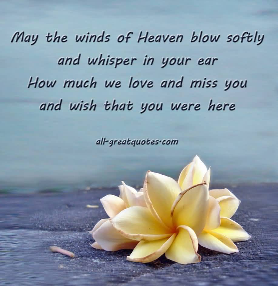 Sweet Quotes For Loved Ones: 20 Heaven Quotes For Loved Ones With Cute Images