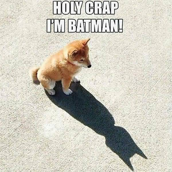 I m Batman Meme Joke Images