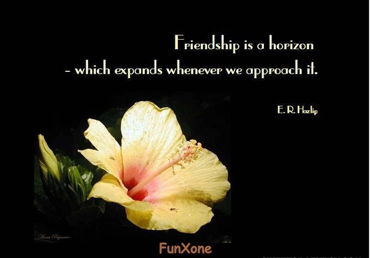 Inspirational Quotes About Friendships 07