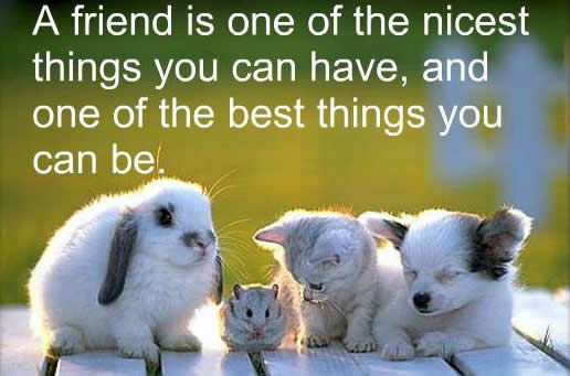 Inspirational Quotes About Friendships 15