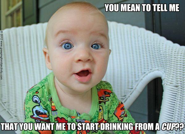 Liquor meme joke