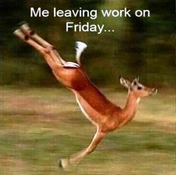 Me Leaving Work On Friday meme Images