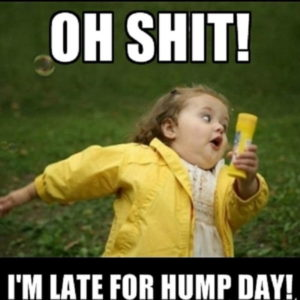 Oh Shit! I'm Late For Hump Day!