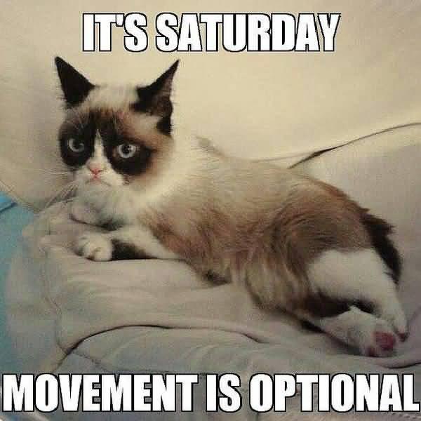 Saturday Humor Pics Jokes (2)