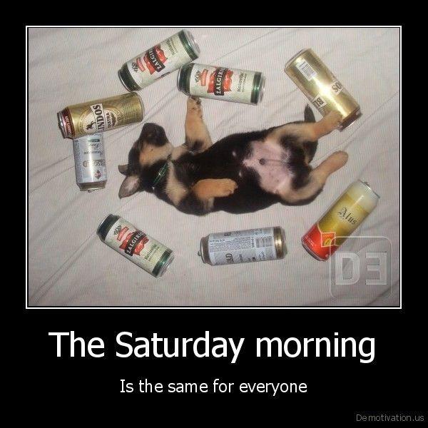 Saturday Morning Memes Gifs (2)