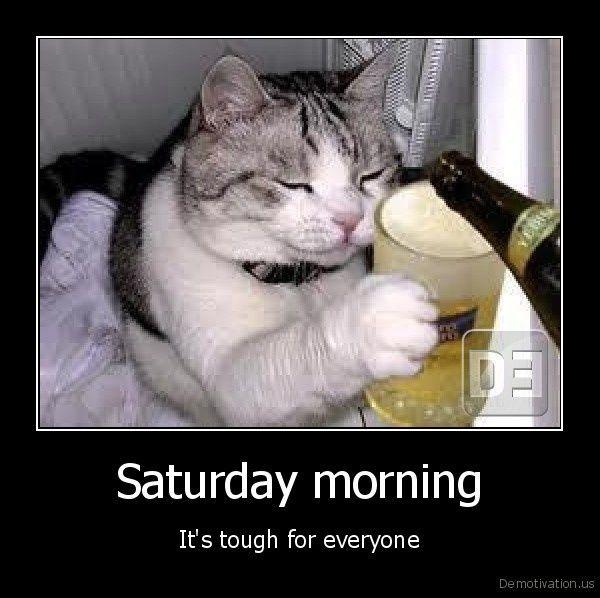 Saturday Morning Memes Gifs (3)