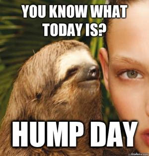 Hump Day Memes You Know What Today Is Hump Day