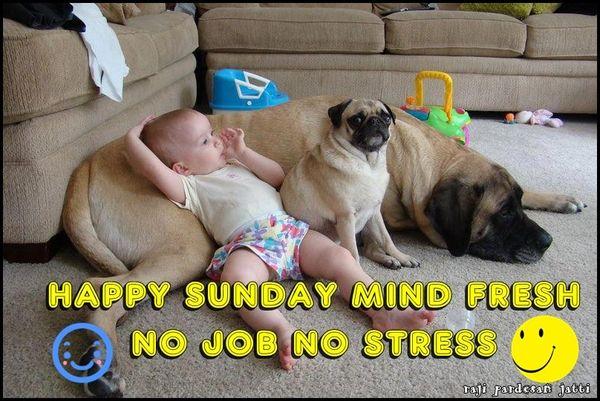hilarious happy sunday meme images