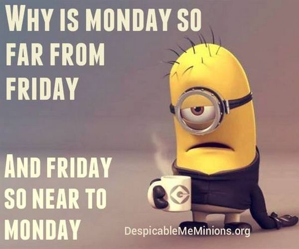 minion Monday meme Pictures