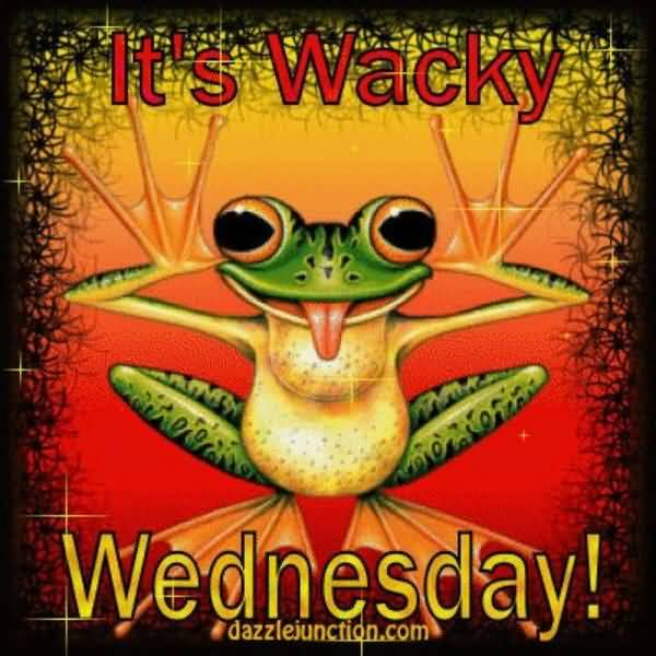 wacky wednesday meme jokes
