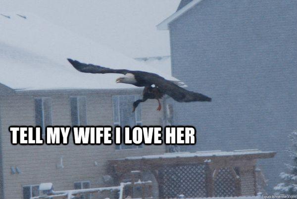 Amusing Tell My Wife I Love Her Funny Meme Joke