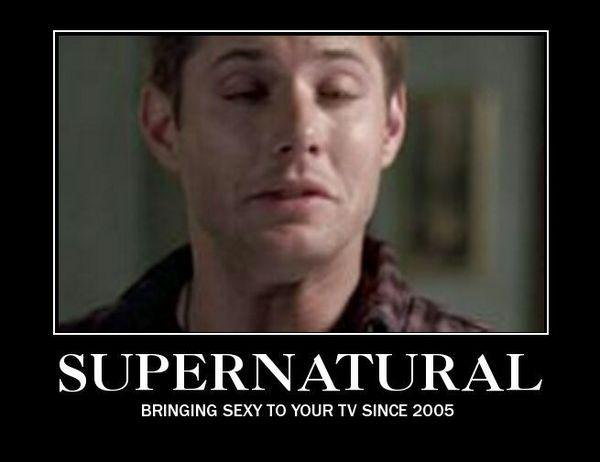 Funniest Supernatural Fan Memes Picture