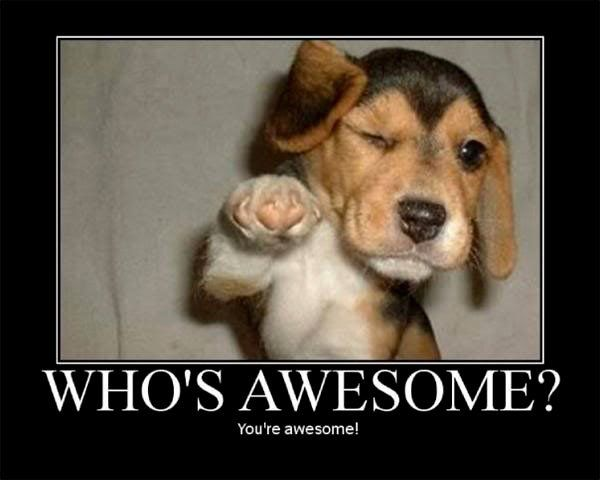 Funniest You Are Awesome Motivation Meme Image