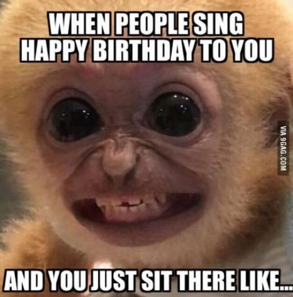 Funniest common funny birthday meme for friend photo
