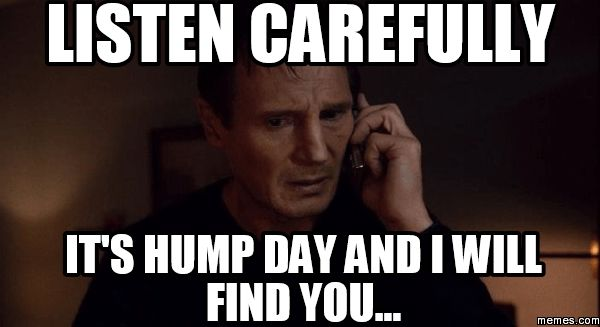 Funniest hump day meme images jokes