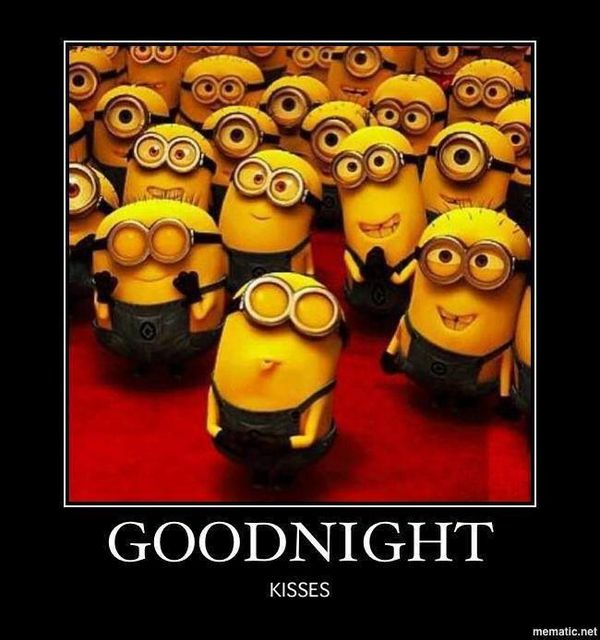Funniest the cutest nighty night meme photo