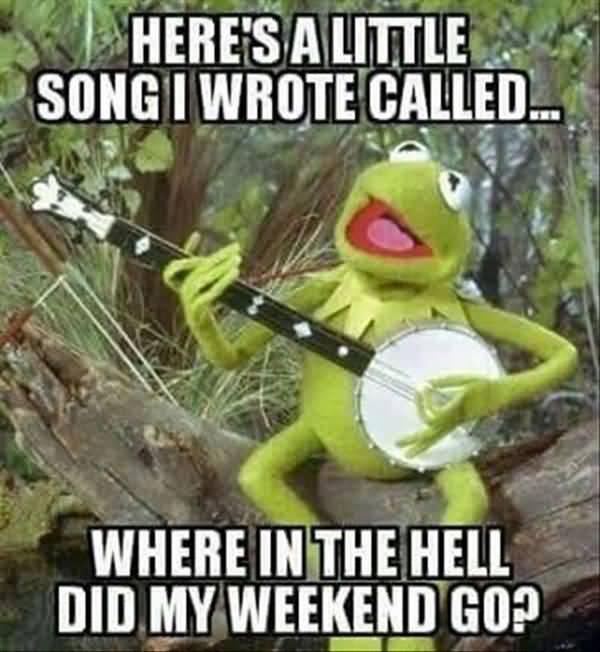 Funniest true night meme photo