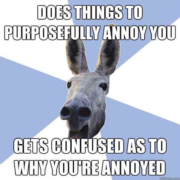 Funny Annoying Boyfriend Meme Image