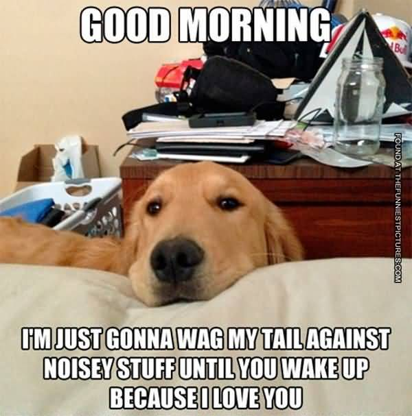 Funny Good Morning Meme Picture