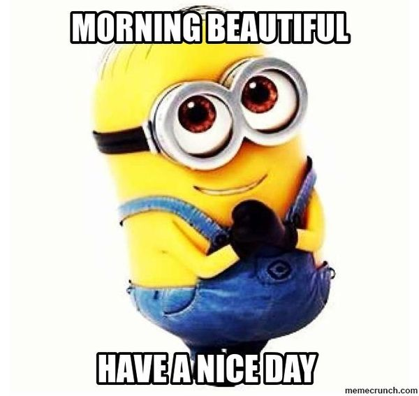 Funny Morning Beautiful Have A Nice Day Picture