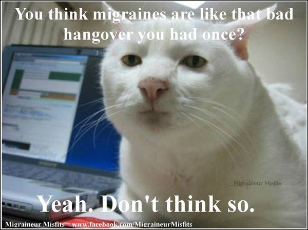 Funny bad hangover funny pictures memes