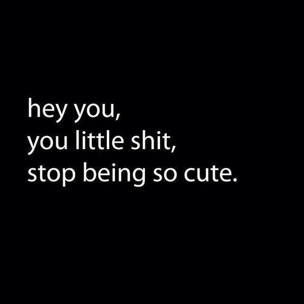 Funny flirtatious memes picture