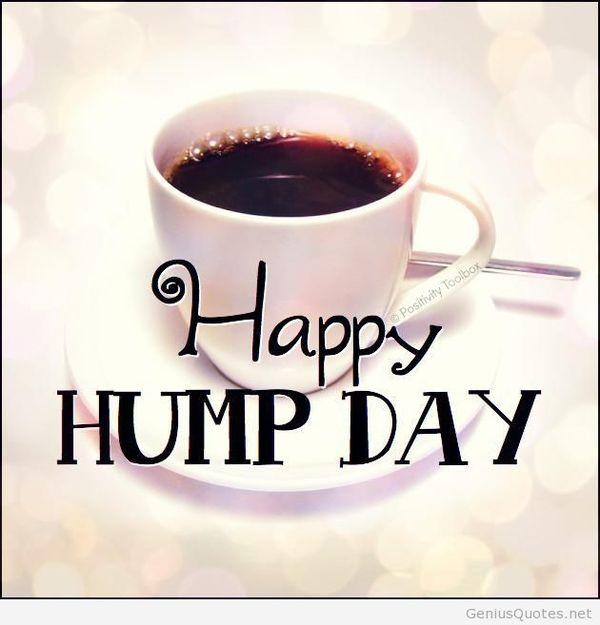 Funny free happy hump day images joke meme