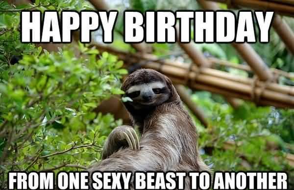 Hilarious best friend birthday meme joke