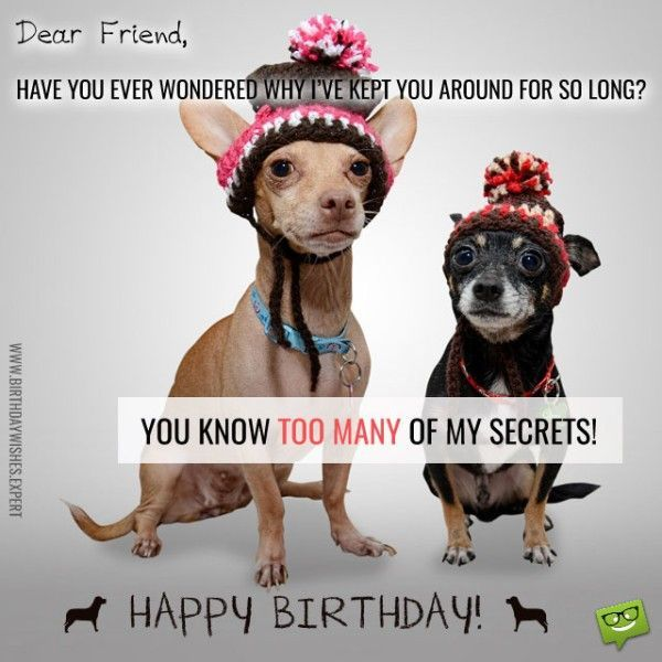 Hilarious birthday meme for friend with Wishes jokes