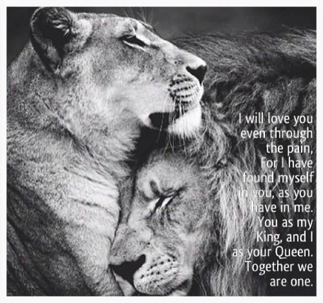 King And Queen Love Quotes 60 QuotesBae Adorable King And Queen Love Quotes