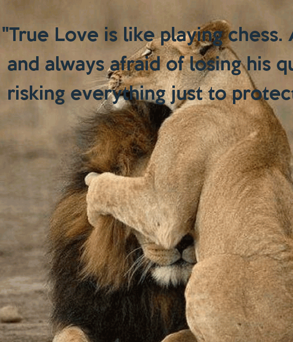 20 King And Queen Love Quotes Sayings and Picture | QuotesBae