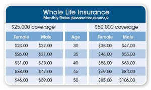 Life Insurance Term Quote 11