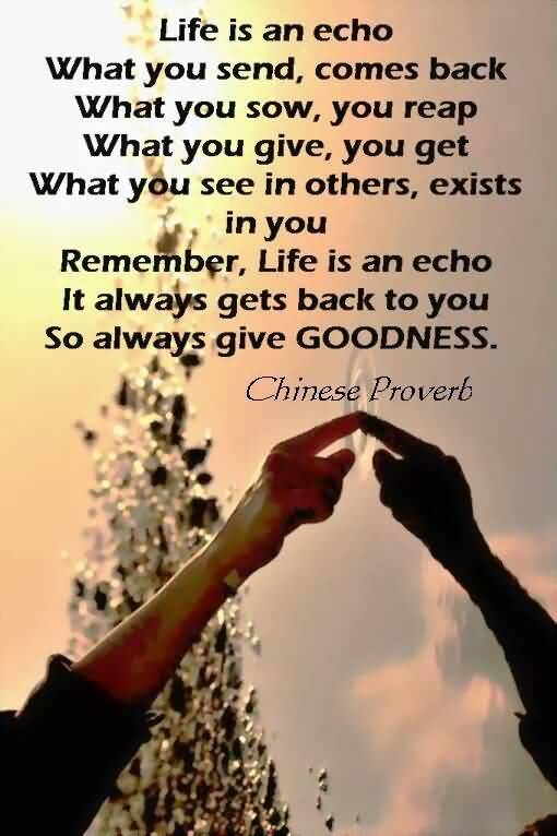 Life Is An Echo Quote 03