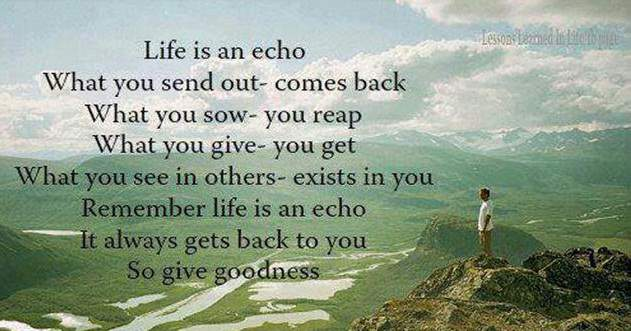 Life Is An Echo Quote 06