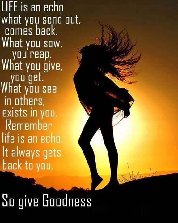 Life Is An Echo Quote 10