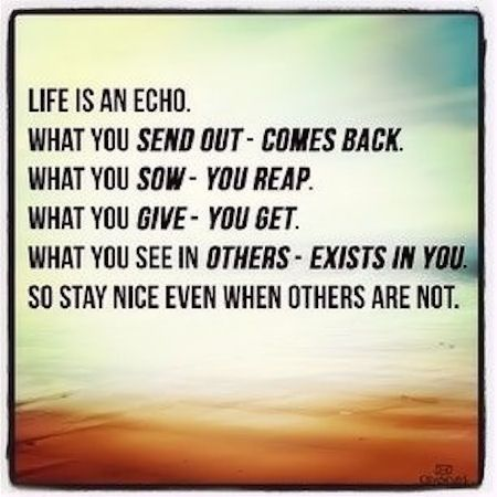 Life Is An Echo Quote 12