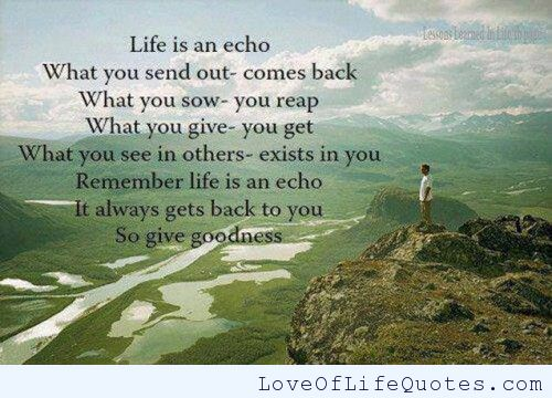 Life Is An Echo Quote 14
