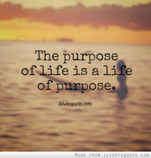 60 Life Purpose Quotes Sayings Images Pics QuotesBae Custom Purpose Quotes