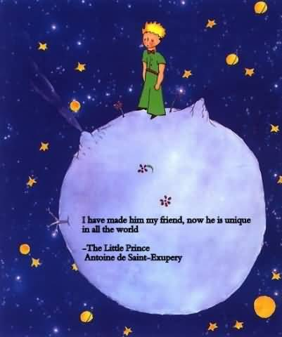 Little Prince Love Quotes 01