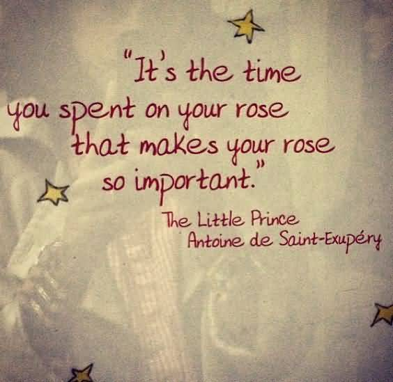 Little Prince Love Quotes 11