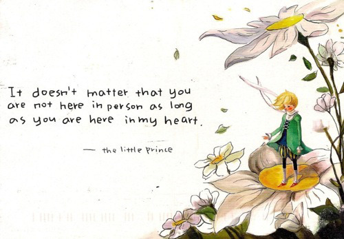 Little Prince Love Quotes 13