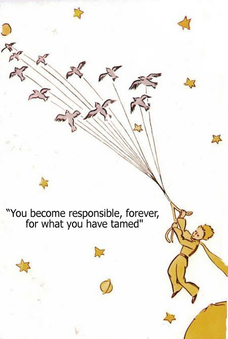 Little Prince Love Quotes 16