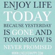 Live Life To The Fullest Quotes 14