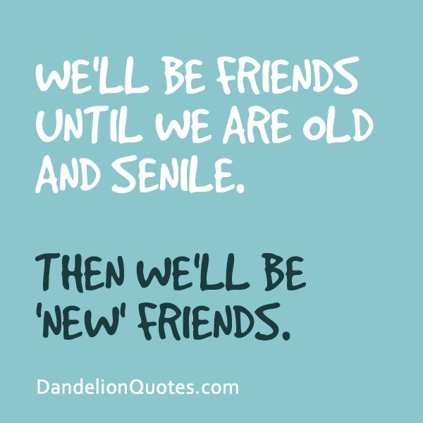 New Quotes About Friendship 15