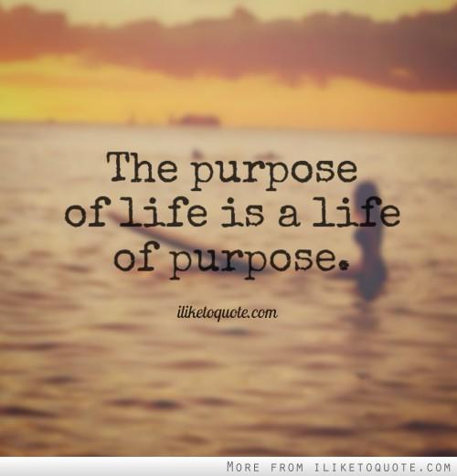 Purpose Of Life Quotes 02